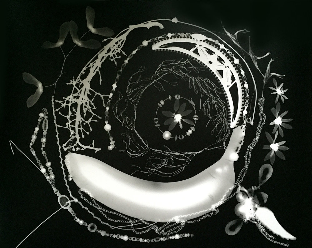 """Falling in   Julie Koehler  Photogram  11"""" x 14""""  $500 ($550 framed)   Click here to Inquire"""
