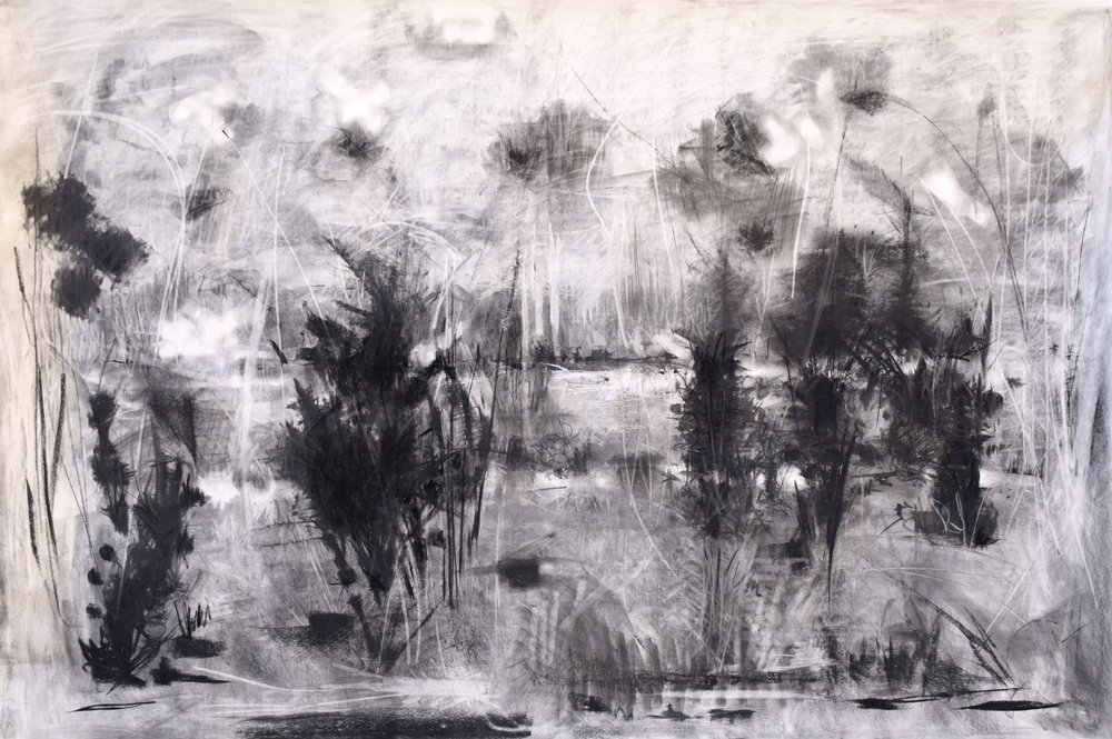 "#20 Potomac   Charcoal on Paper  43"" x 62""  $2700   Click to Inquire"