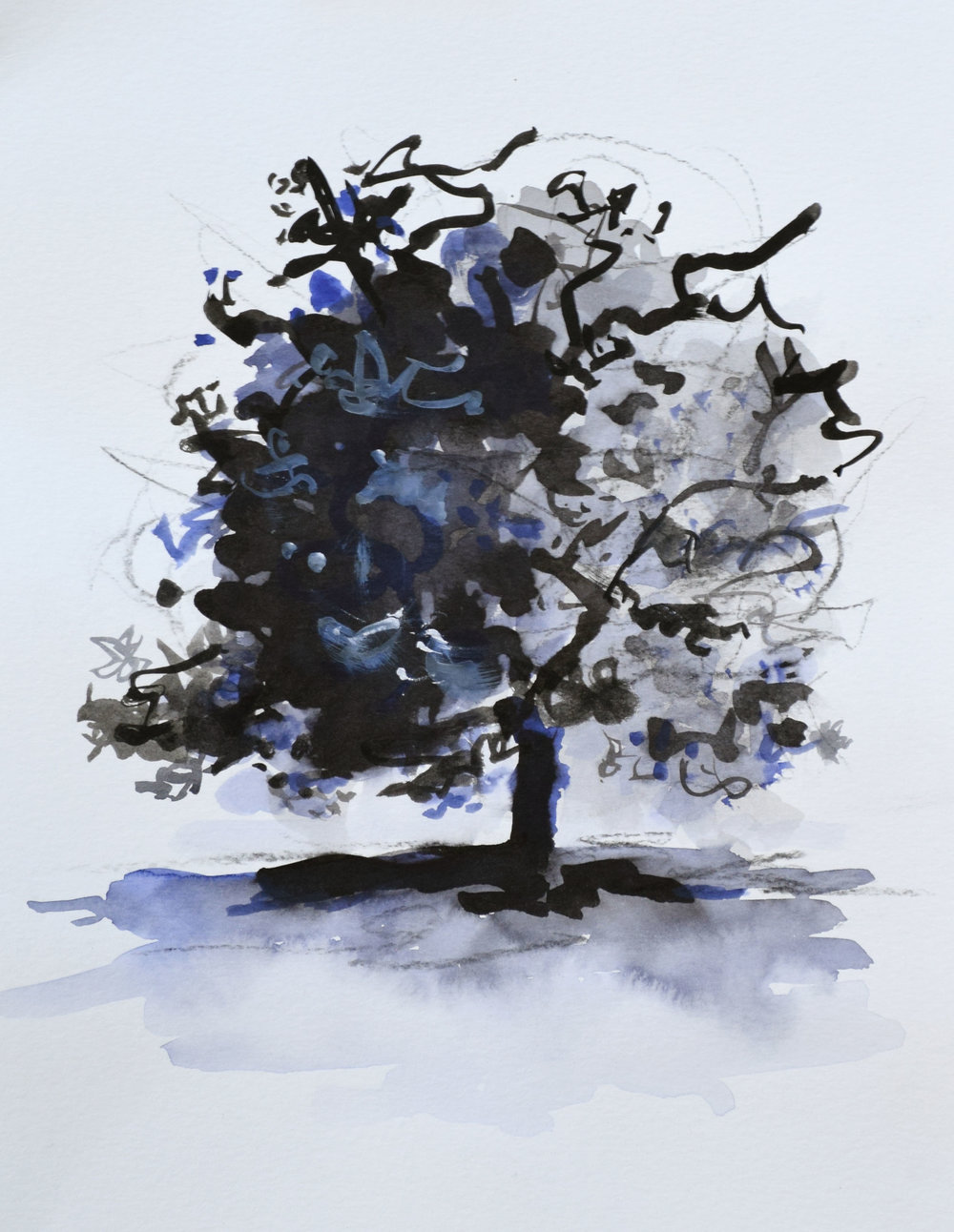 "#9 Lone Tree    I nk and Watercolor on Paper  12"" x 15""  $800   Click to Inquire"