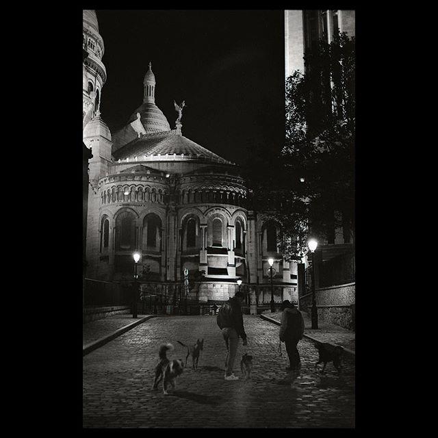 Spoiled pups . . . . .  #film #35mm #paris #france #nikon #nikonf3 #kodak #tmax400 #pushedfilm #selfdevelop #streetphotography #justgoshoot #analogfeatures  #sharefilm #shootfilm  #buyfilmnotpixels #analog #filmisnotdead #dogsofinstagram #pups #keepfilmalive #shootfilmstaybroke #filmphotography