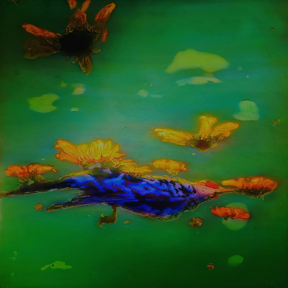 "381 Troposphere 48"" x 48"" Oil on wood panel $9,200."