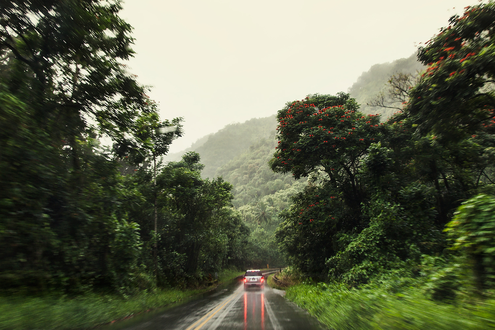 car-braeking-in-the-rain-on-the-road-t0-hana-on-maui-travel-photographer.jpg