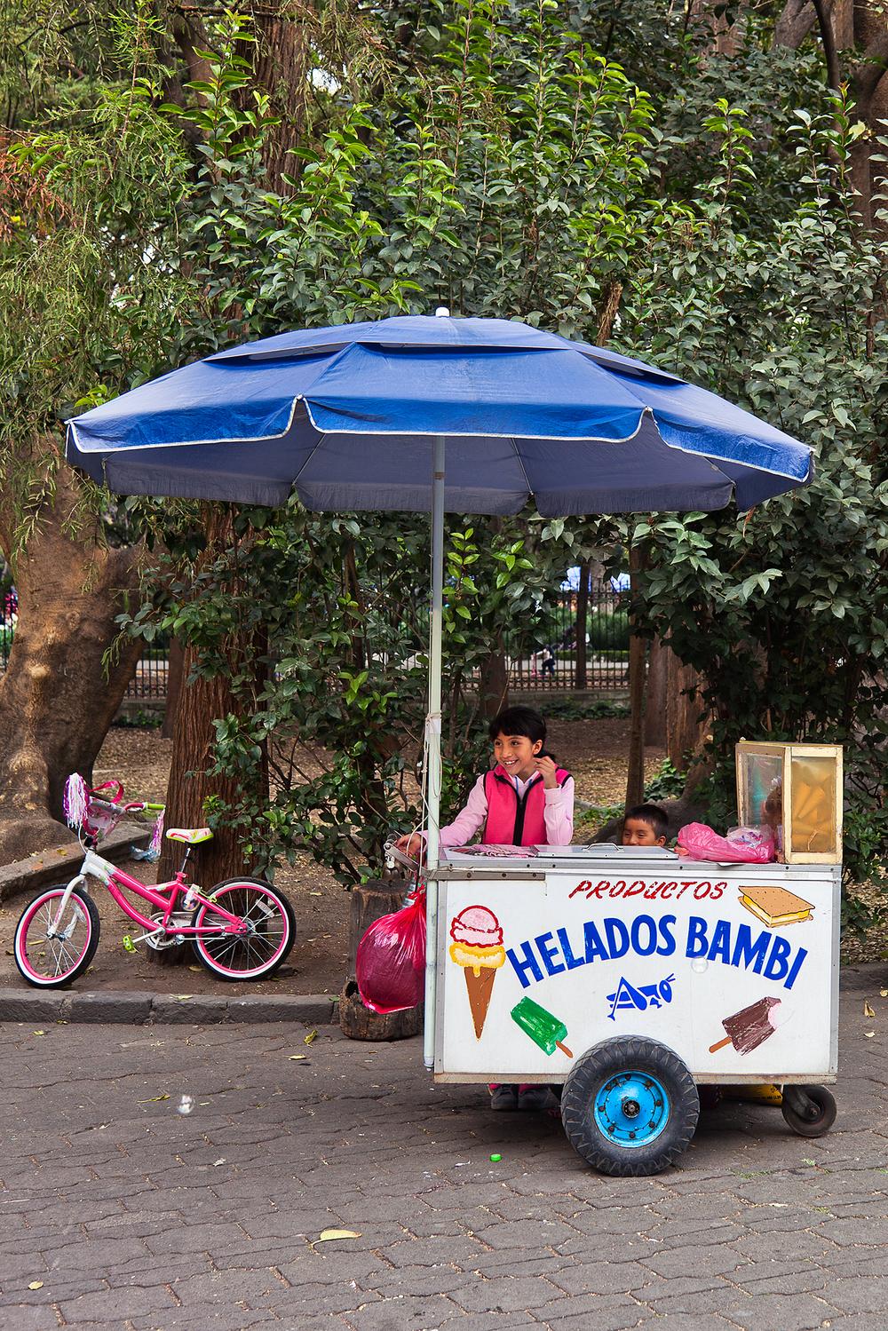 productos helados bambi chapultepec park mexico city mx.jpg
