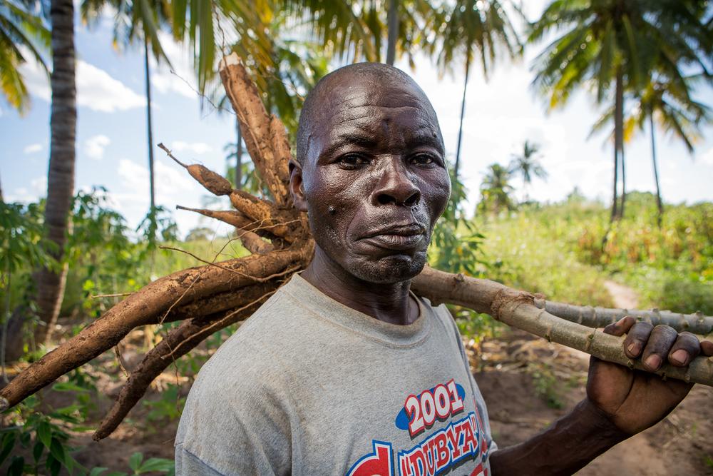 Cassava farmer, Nampula, Mozambique