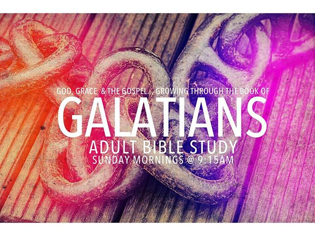 Calling all Rock ADULTS! Join us tomorrow morning @ 9:15am as we continue a new Sunday morning study on the Book of Galatians. See you then! #TRCCLakeland
