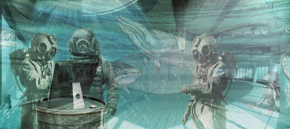 google underwater_res baja.jpg