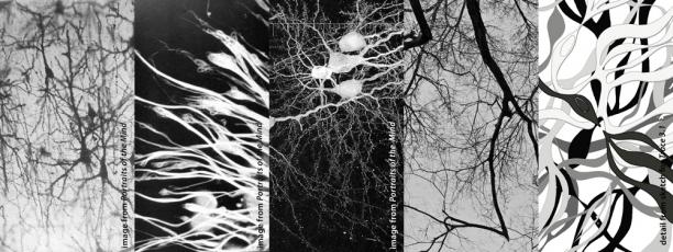 neurobiology art inspirations