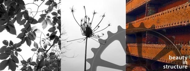 inspirations | Bloom 4.2