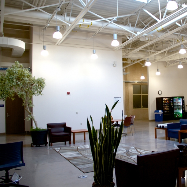 Parkland College | student lounge | feature wall