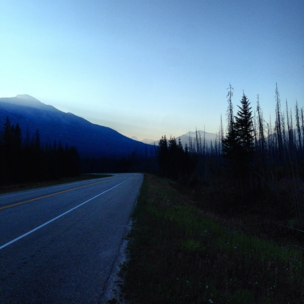 Kootenay National Park | forest fires | c Heather Hancock 2014