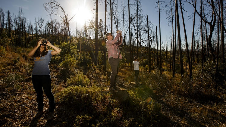 LA Times profiles Blue Forest Conservation