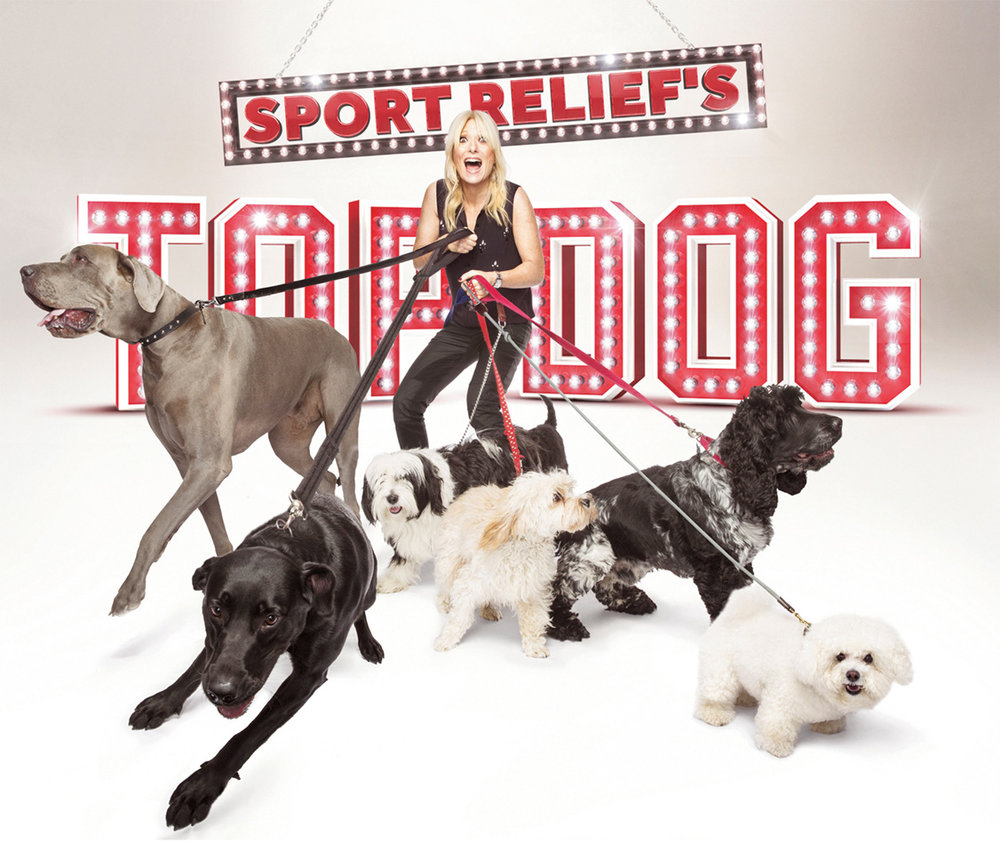 33-1 BBC - Sport Relief's Top Dog.jpg