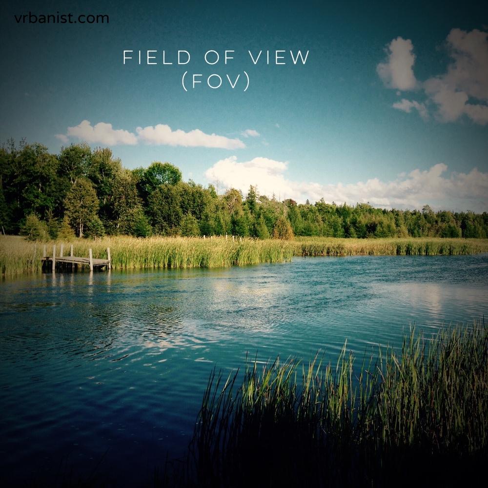 Field of View (FOV)