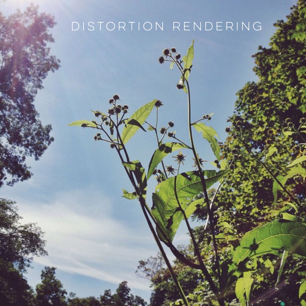Distortion Rendering