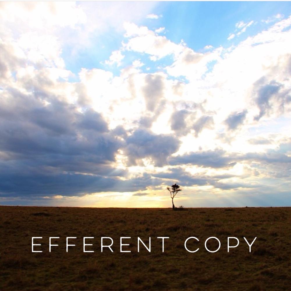 Efferent Copy