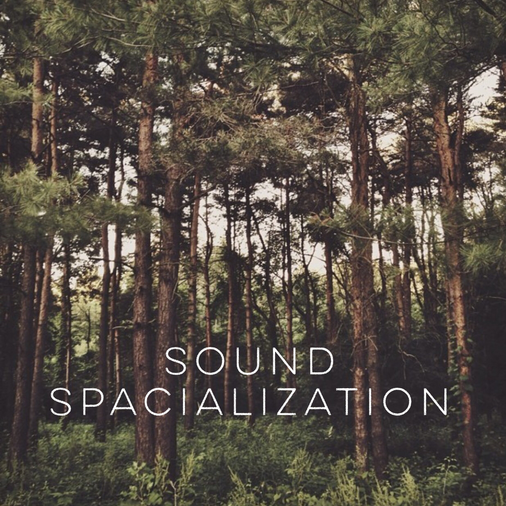 Sound Spacialization
