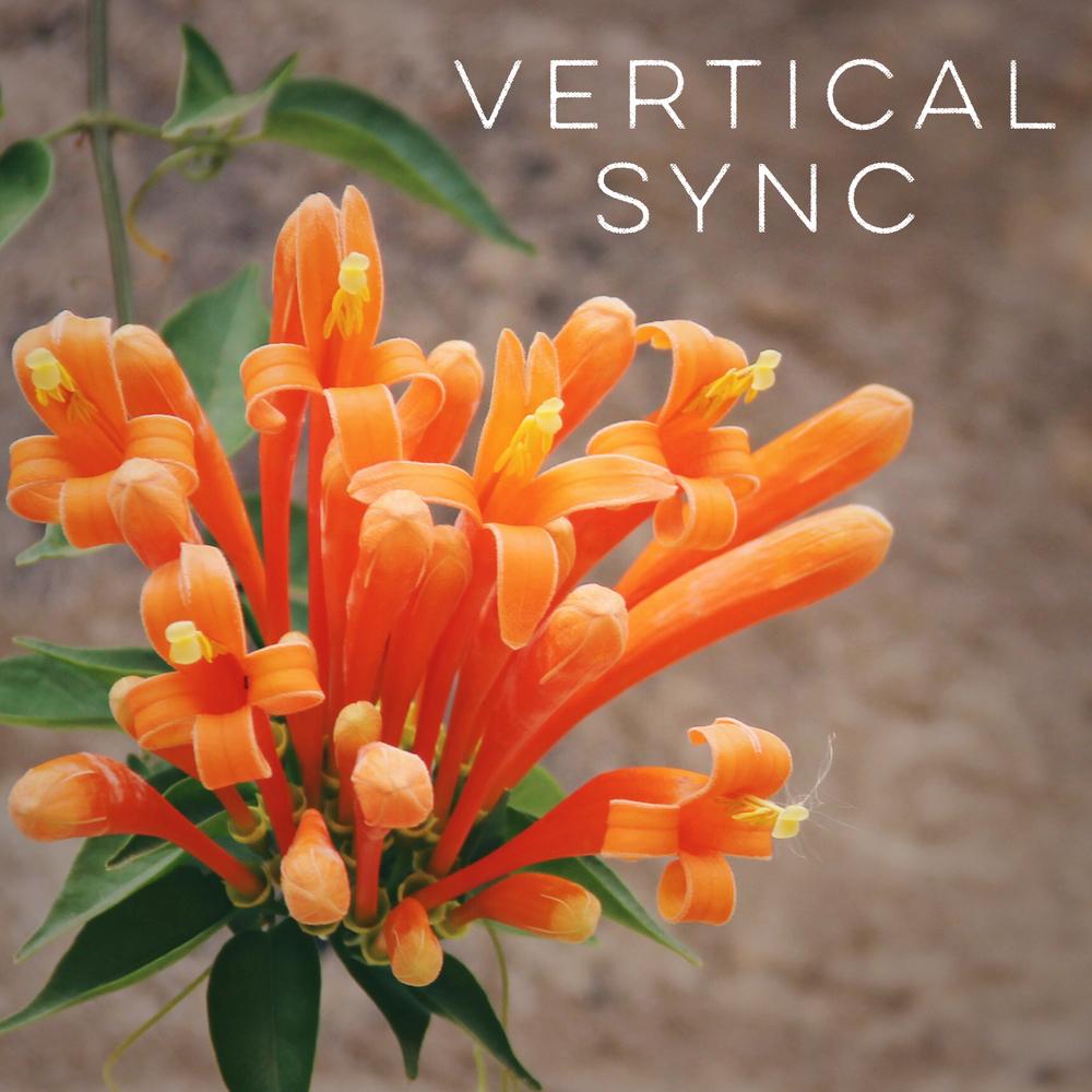 Vertical Sync
