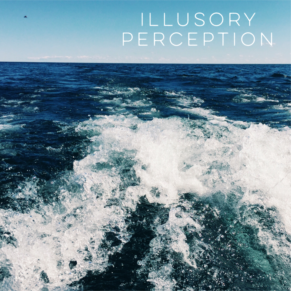 Illusory Perception