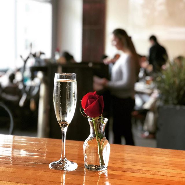 Happy Mother's Day to all the beautiful, powerful women out there! Thank you for everything. 🙏🏻 #mothersday #welovemoms #dogmom #catmom #brunch #foodies #lobster #stamford #stamfordct #harborpoint #harborpointstamford #boothbayharbor