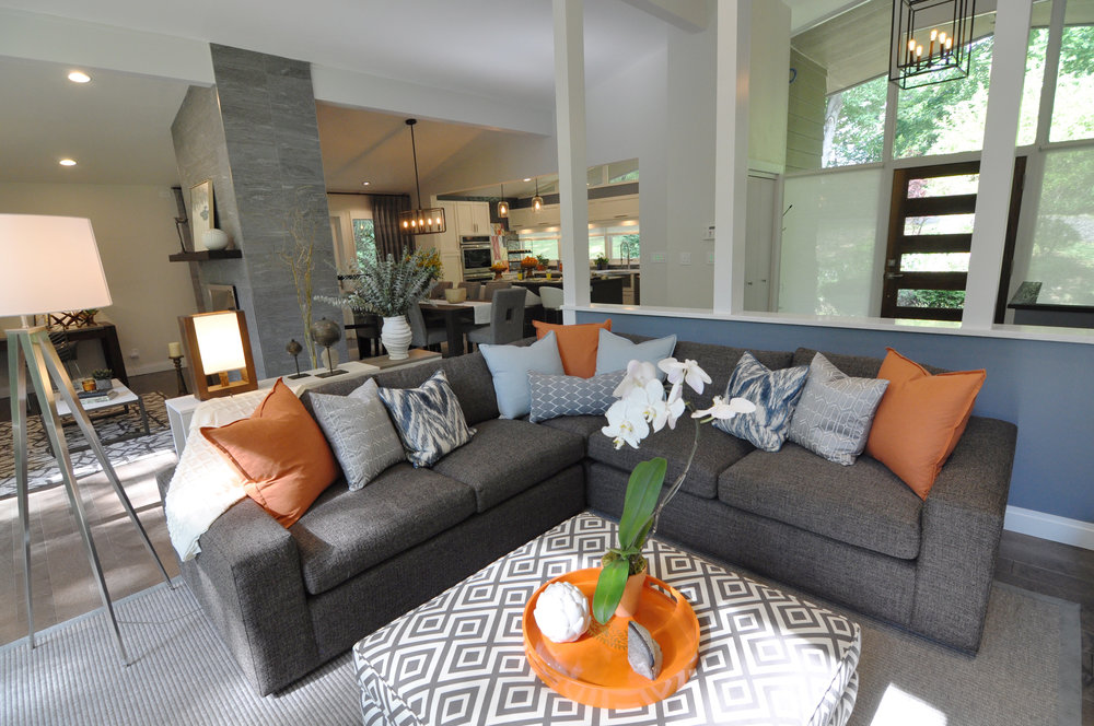 Kim A Mitchell_Design Lead_HGTV_The Property Brothers_Season 6_Episode 9_Living Room_Sofa Sectional_2017_Global_Modern Interior.jpg