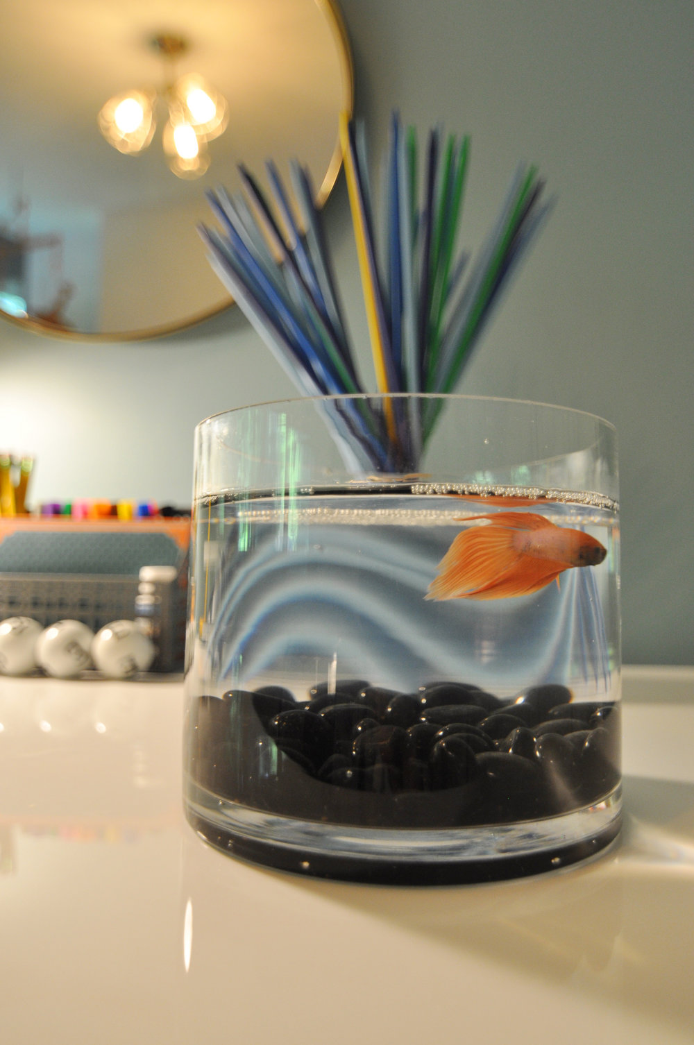 Kim A Mitchell_Design Lead_HGTV_The Property Brothers_Season 6_Episode 9_Child Bedroom_Close-up Fish_2017.jpg