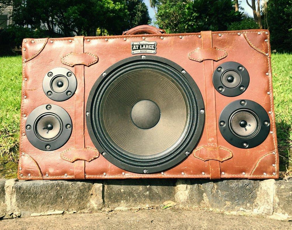 Danny Custom speaker.jpg