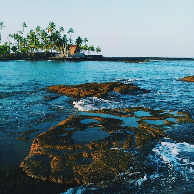 You head to the ocean for a swim and snorkel amongst lava rock tide pools, a coral reef and hundreds of fish.
