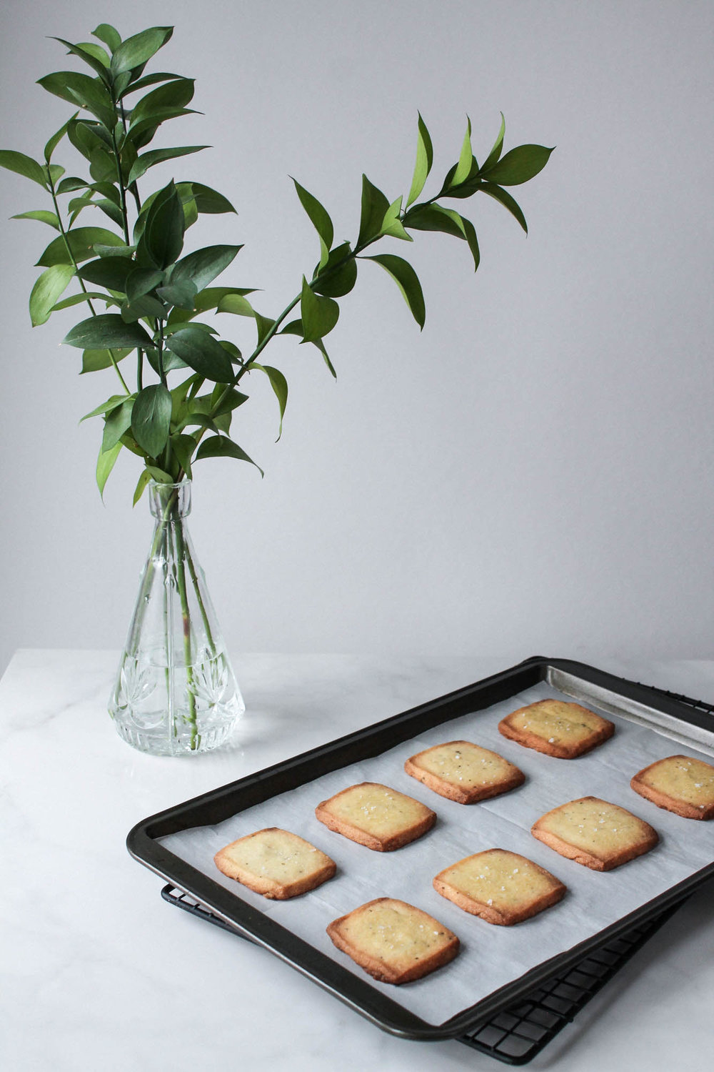 Rosemary Olive Oil Shortbread Cookies || Savoury winter biscuit recipe made with only 6 ingredients. Simple and delicious! Holiday or Christmas baking at it's finest. || www.creamandhoney.ca