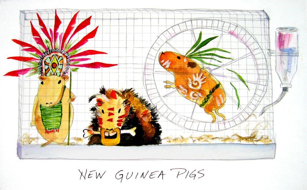 A23 New Guinea Pigs copy.jpg