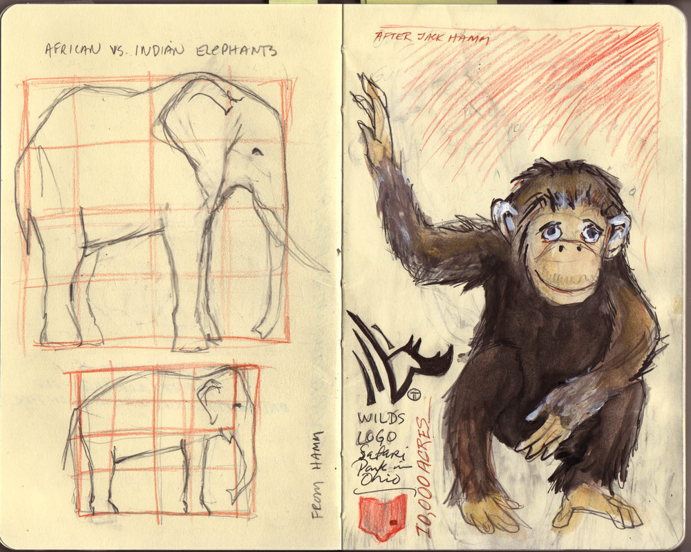Fiedler Moleskine Eleph-Monkey.jpg