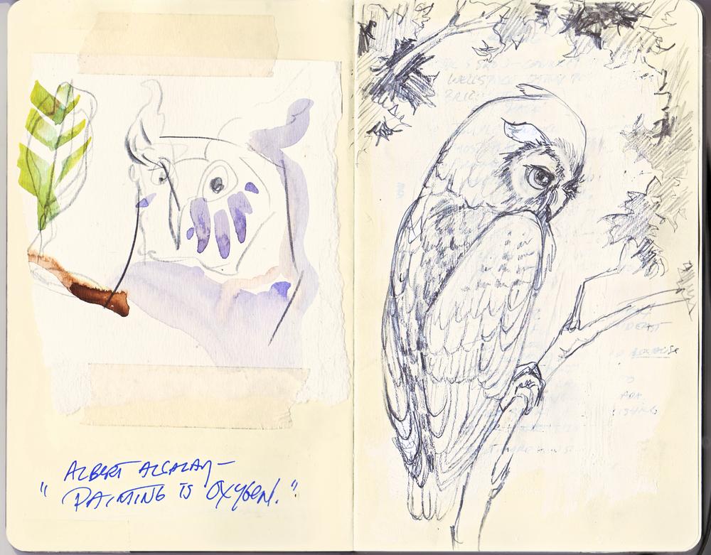 Fiedler Moleskine Owls Sketches.jpg