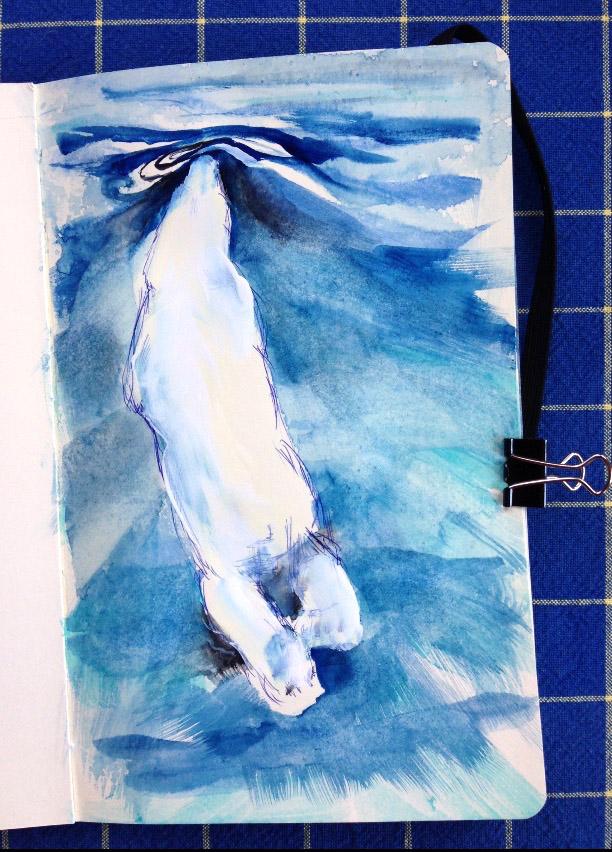 DFiedler_Sketchbook_PolrBearSwimming.jpg