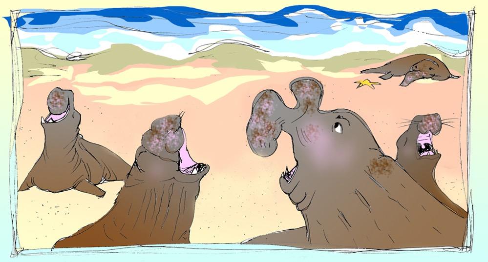 DFiedler_Elephant Seal Roars copy.jpg