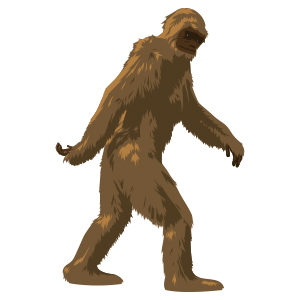 NMR Bigfoot