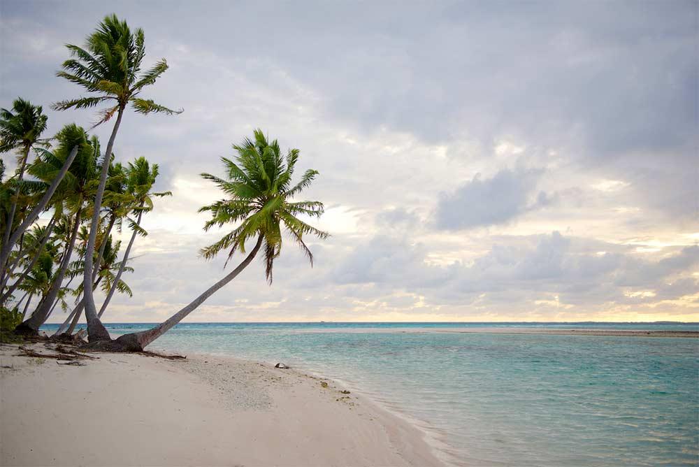 Tropical-Island-Holiday-Ted-Grambeau-14.jpg