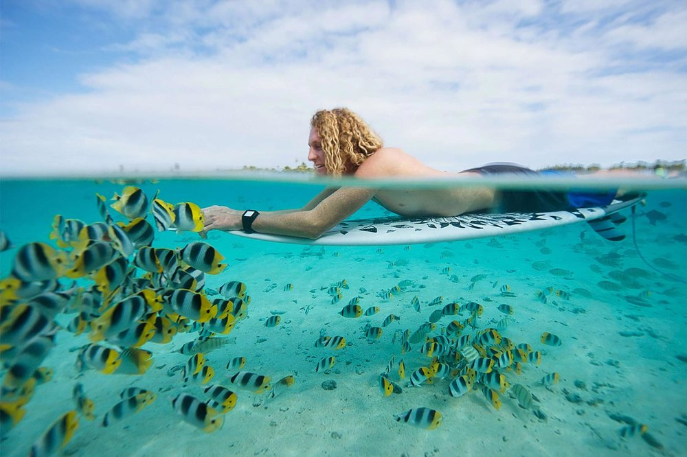 under over water photography - tropical fish + Rip Curl Surfer Luke Hynd