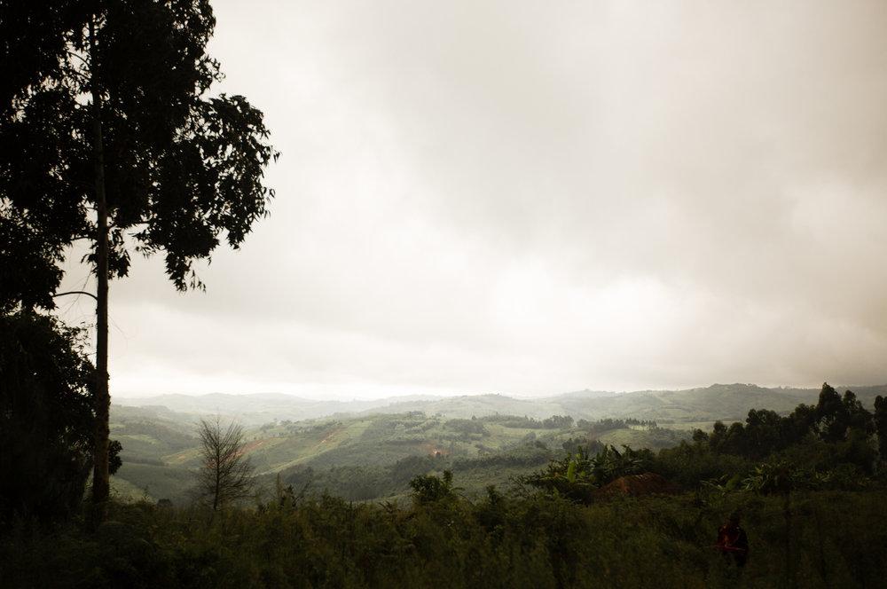 HIW_Landscapes-9430.jpg