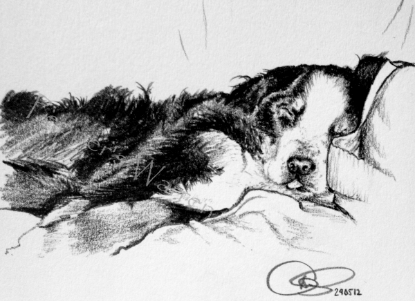 Sleepy Hattie