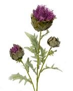 Artificial Thistle