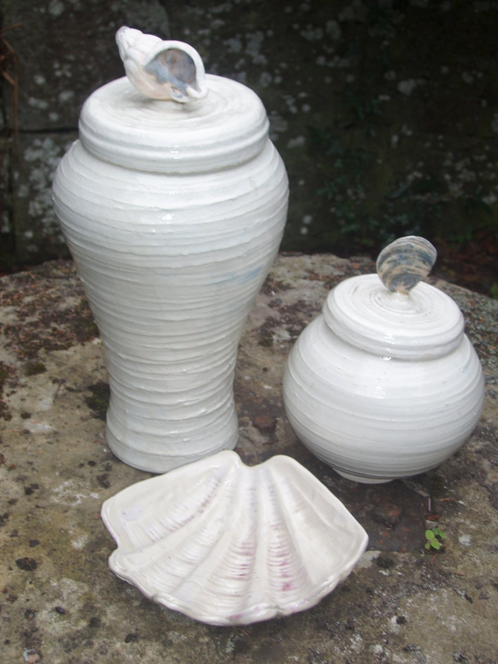 large and round shell vases and clam.jpg