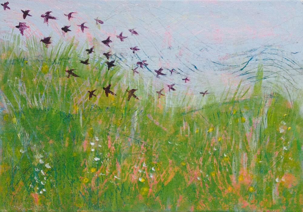 Machair-and-Starlings,-Tiree.jpg