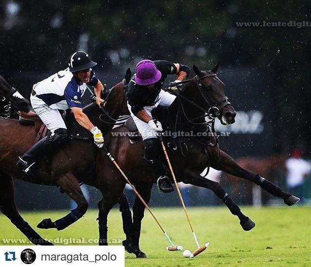 #Repost @maragata_polo ・・・ Pelon trying to stop Facu! #PalermoFinal #triplecorona #charrua #ladolfina #Ellerstina #horsepolo #instapolo #instahorse #horses #horsegram #polopics pic by @pabloramirezphotos