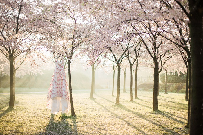 Wedding Photographer Elisabeth Van Lent - Cherry Blossoms_0002.jpg