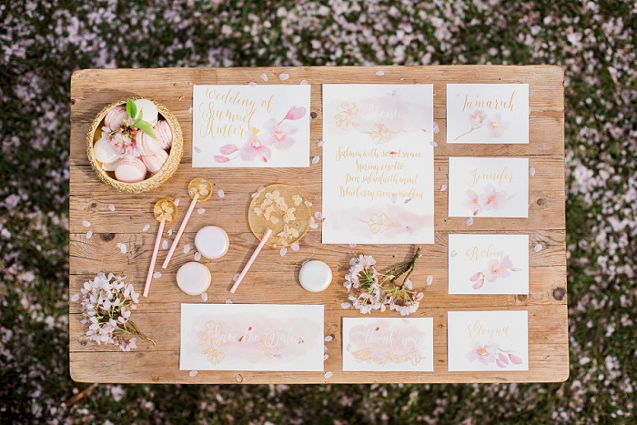 Wedding Photographer Elisabeth Van Lent - Cherry Blossoms_0086.jpg