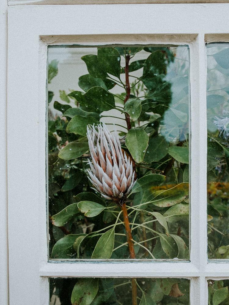 Sheffield Botanical Gardens-8.jpg