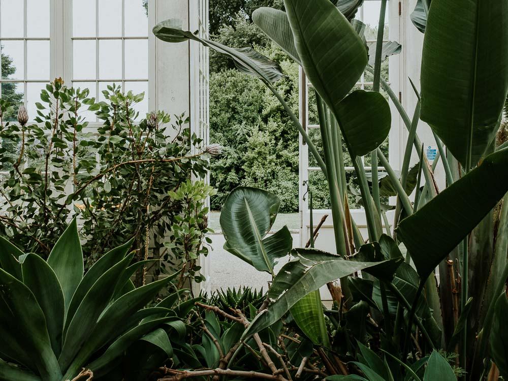 Sheffield Botanical Gardens-10.jpg