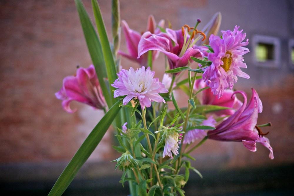 Blumen in Venedig