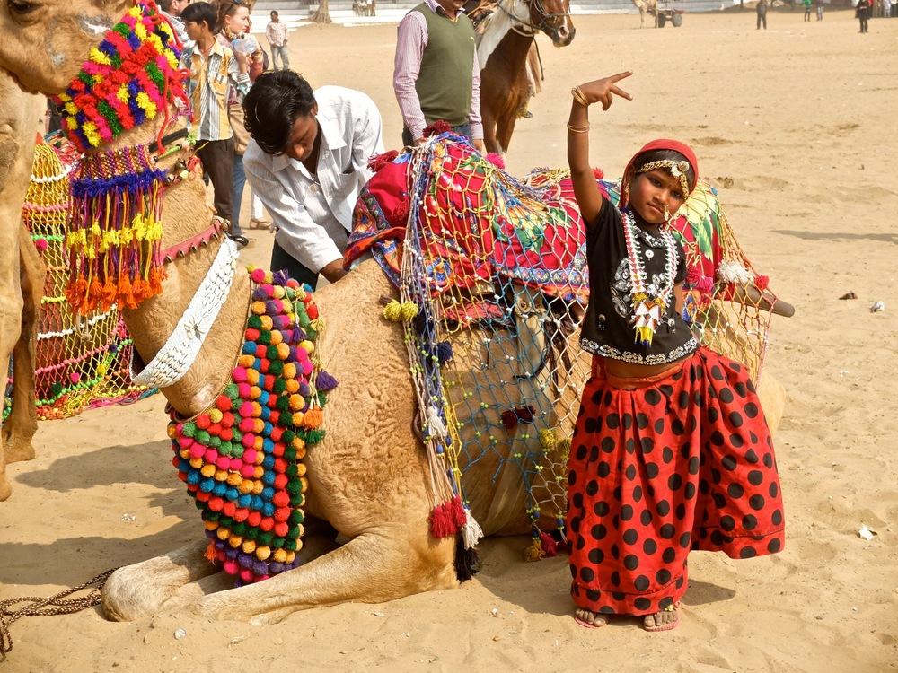 Pushkar_Camel_Fair_2013_Zahid Sardar - 17.jpg