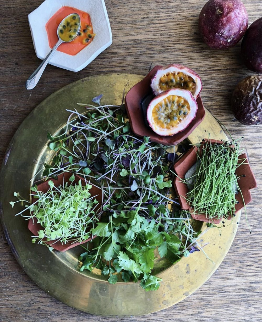 Passion fruit, herbs, sprouts, and microgreens for Botanica Restaurant