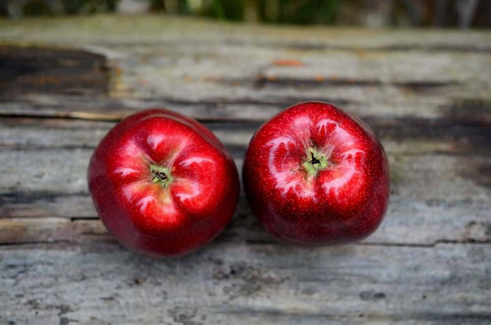 Apples – Healthy vs. Unhealthy